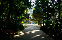 Botanical Garden - City Tour